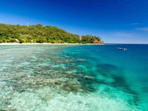 Lagoon reef